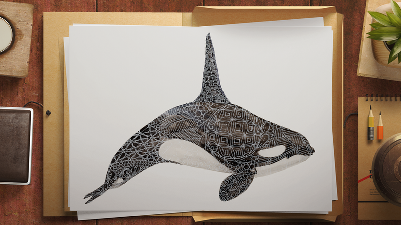 Limited Edition Orca Print. Watercolour & gel pen original by Janet Nikora