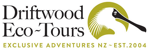 Driftwood EcoTours Est 2014 logo.jpg