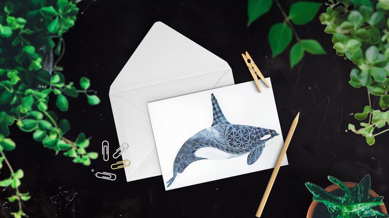 Limited Edition Orca Card. Watercolour & gel pen original by Janet Nikora