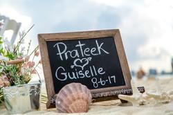 8-6-17 Prateek_&_Guiselle-9