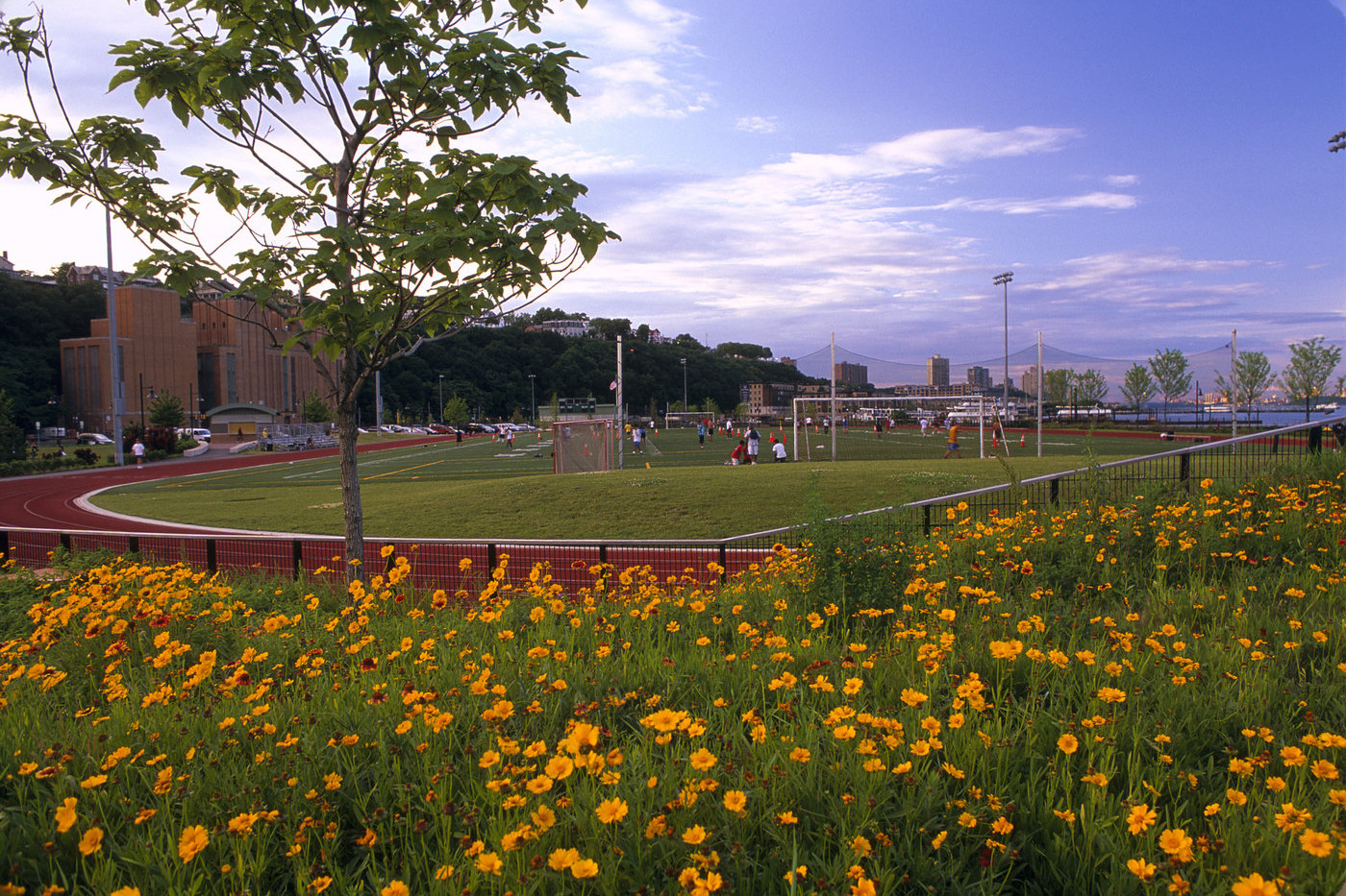 Weehawken Recreational Field