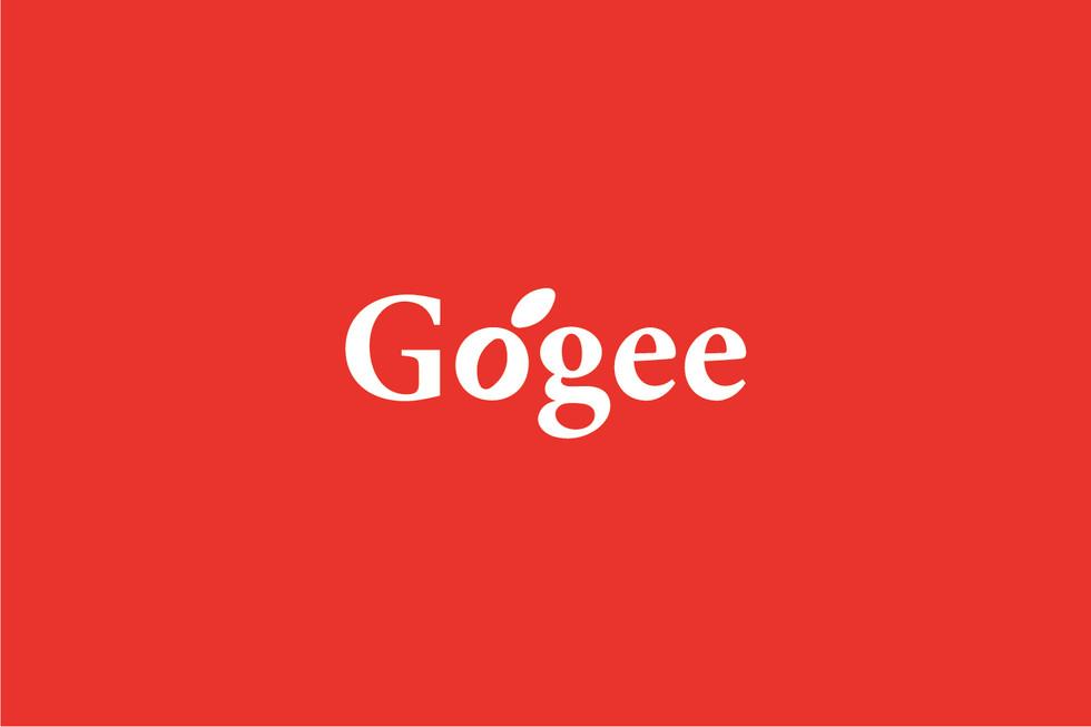Gogee Branding & Packaging 1.jpg