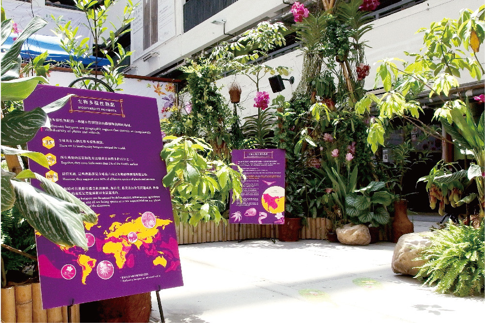 Nature's Nobility – Discovering the wonders of orchids Exhibition and Art Workshop 2