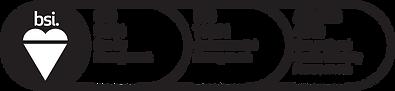 BSI ISO CERTIFICATIONS_ESG_black-02.png