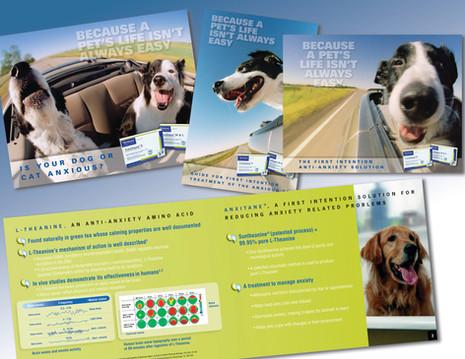 Set of Brochures