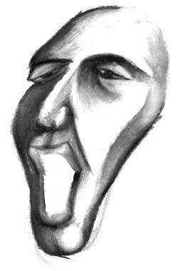 visage13