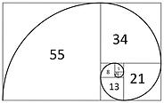 serie-fibonacci-forex.png