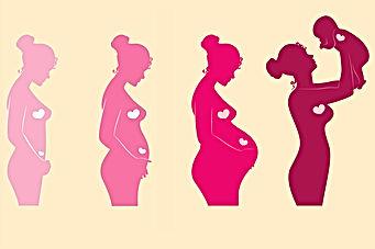 prenatal-test-pregnancy-trimester-main-d