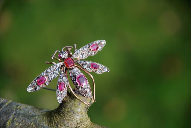 Diamond Ruby Broach.jpg