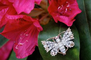 Header_Diamond Butterfly Brooch.jpg
