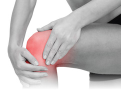 Anteromedial (front and inside) Knee Pain