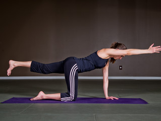 4 Point Kneeling Exercise - For Trunk Stability