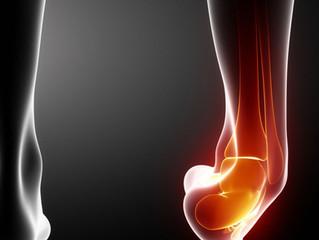 Beginner Stage Ankle Rehab