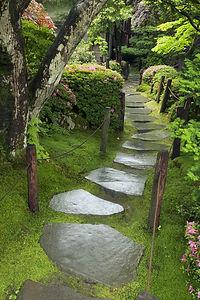wet stone pathway in Japanese Zen garden