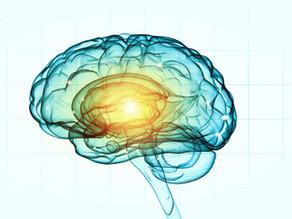 Neurofeedback: Just How Effective Is It?
