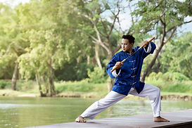 Man in Blue Practicing Kung Fu