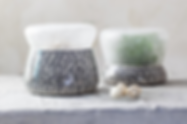 LAB Series: HerbLAB & MushroomLAB