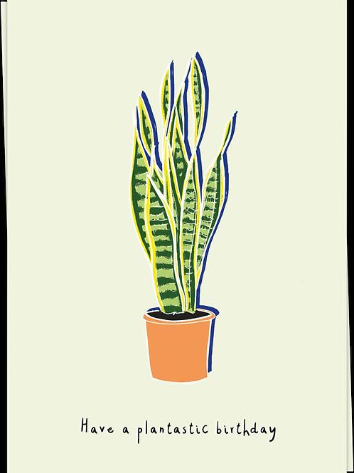 Have a plantastic birthday