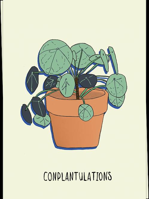 Conplantulations