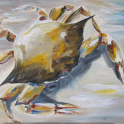 Sand Crab - 2hr.JPG