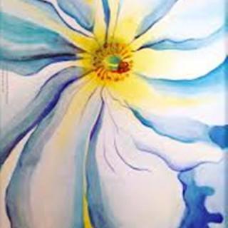O'Keefe Hibiscus - 2hr.jpg