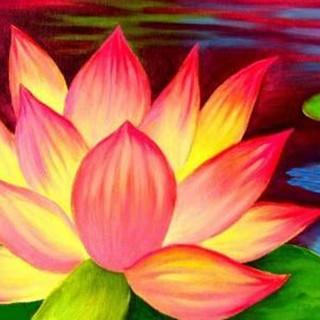 Crazy Lotus - 2 hr.jpg