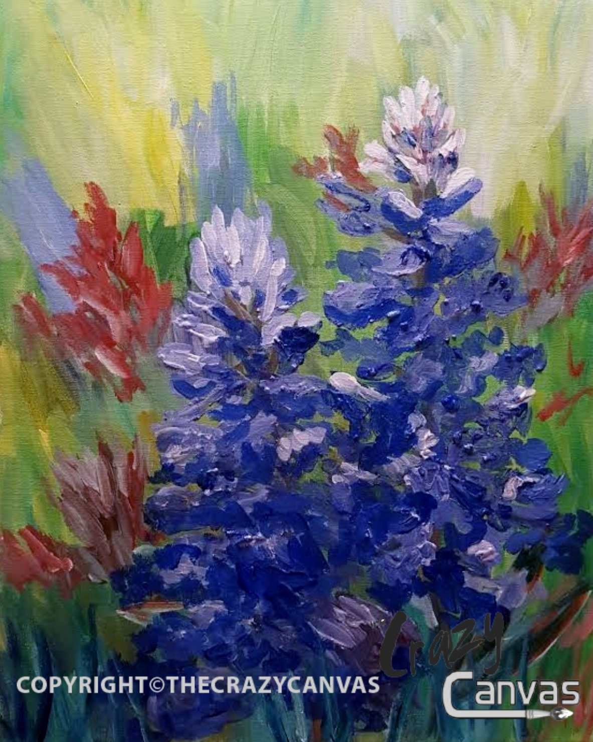Brynley's Bluebonnets - 2hr