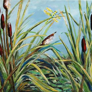 Cattail Pond - 2hr.jpg