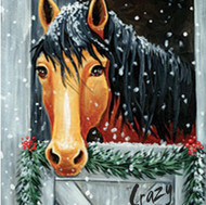 Holly the Horse - 2hr.jpg