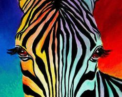 3 Hour - Zebra Stare