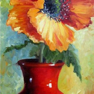 Orange Poppy - 2hr.jpg
