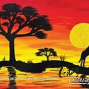 African Sunset - 2hr.jpg
