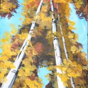 Birch Towers