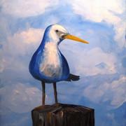 Blue Gull - 2hr.JPG