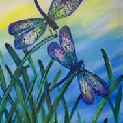 Dragonflies - 2 hr.jpg