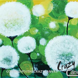 Delicate Dandelions - 2hr.jpg
