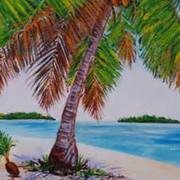 Pineapple Palm - 2hr.jpg