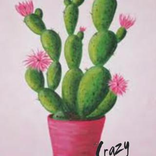 Blooming Cactus - 2hr.jpg