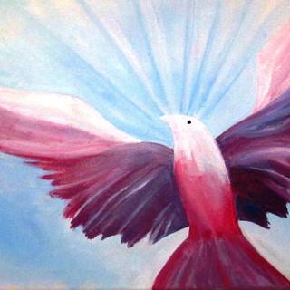 Pink Dove -2hr.JPG
