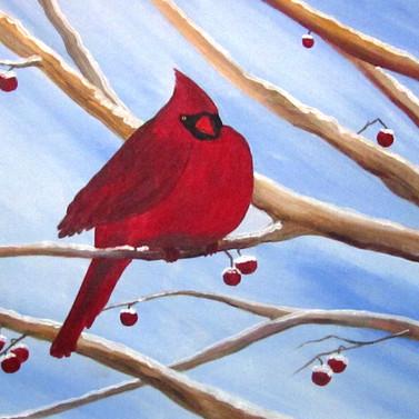 Snow Cardinal.JPG