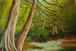 Woodside Gallery