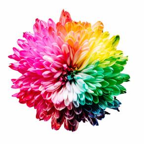 La symbolique des couleurs