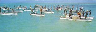 La pêche à la senne. Fishermen net fishing.