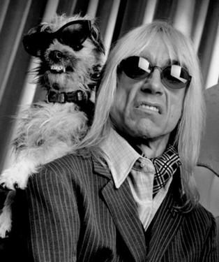 Iggy Pop: quando ele e dois cães se chaparam de Valium