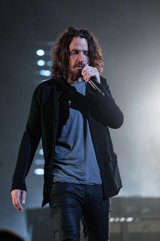 Soundgarden, Temple of The Dog, Audioslave
