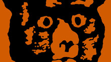 R.E.M: a música da banda que fala sobre o ator River Phoenix