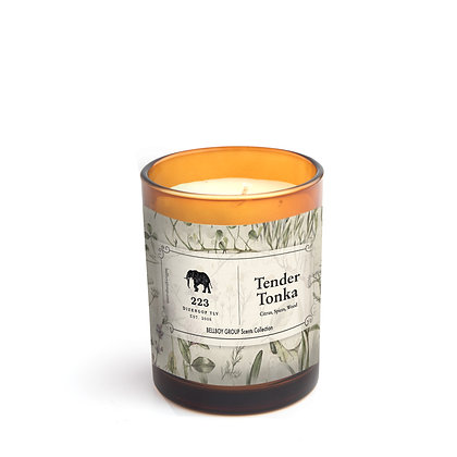 The 223 Candle | Tender Tonka