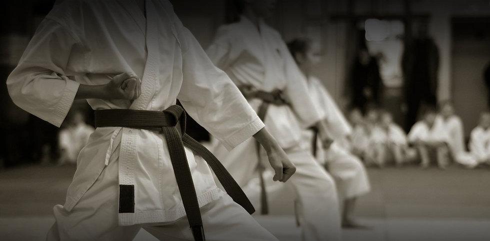 Karate Ribeirao Preto Sant'Anna Dojo