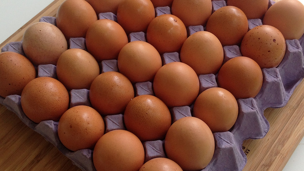 Pastured Eggs- tray of 30