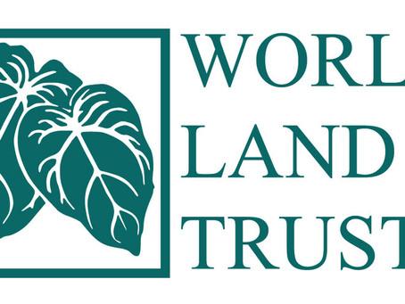 'Plant a Tree' programme